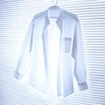 29306782 - dress shirt